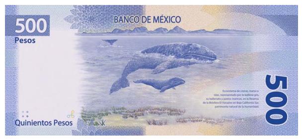 500 pesos dorso